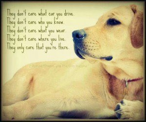 They only care that you're there. #dogs #dogsarelove