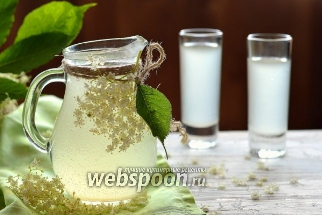 Квас рецепт из березового сока