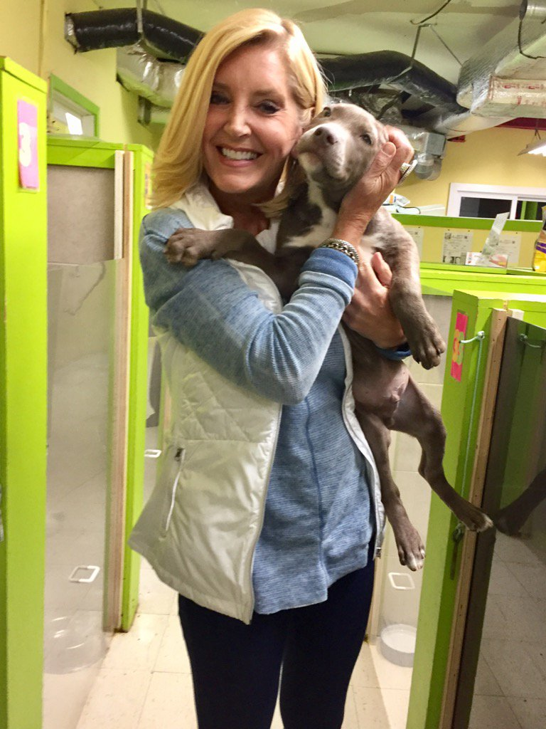 I think it's a case of puppy love. 3-month old Buddy is up for adoption at @savedmerescue! So Cute @FOX29philly