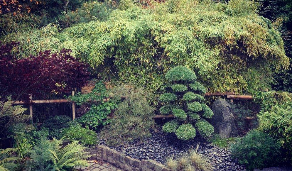 Le Jardin Feng Shui Jardin Fengshui Twitter - Decoration Jardin Feng ...