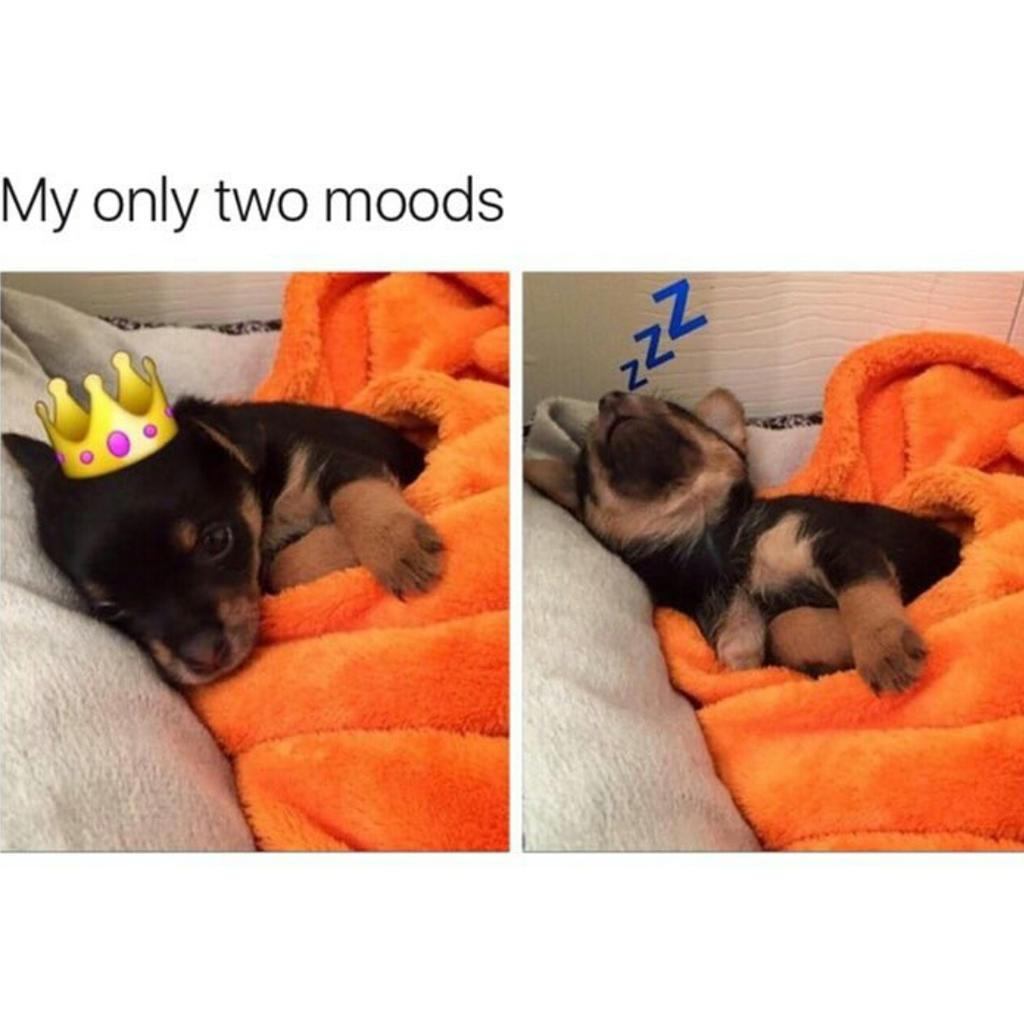"trendngcurrentevents on twitter: ""#mood #currentmood #currentmoods"