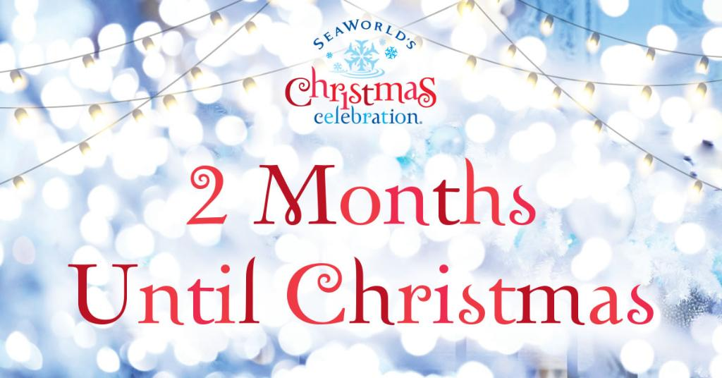 How Long Till Christmas.Seaworld San Antonio On Twitter Two Months Until Christmas