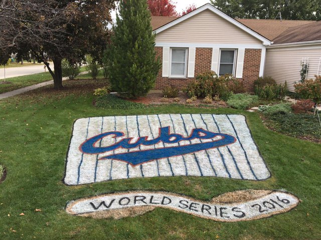 Cubs fans deck out houses in celebration