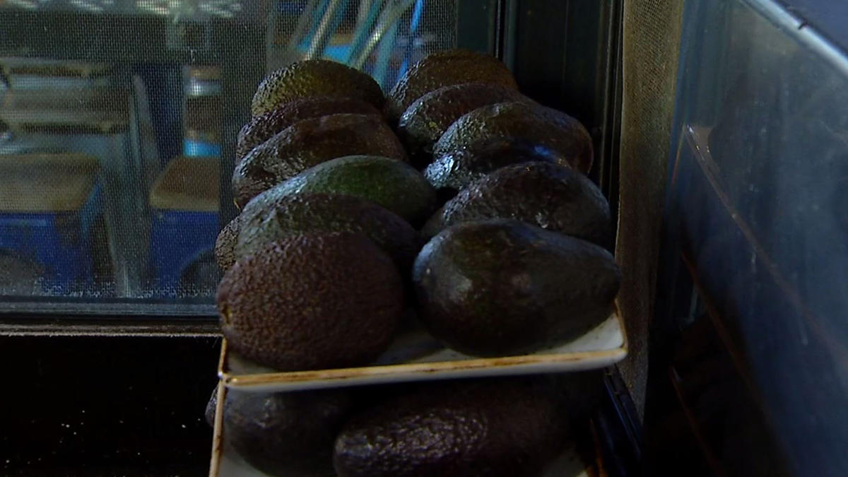 Bad news for guacamole lovers