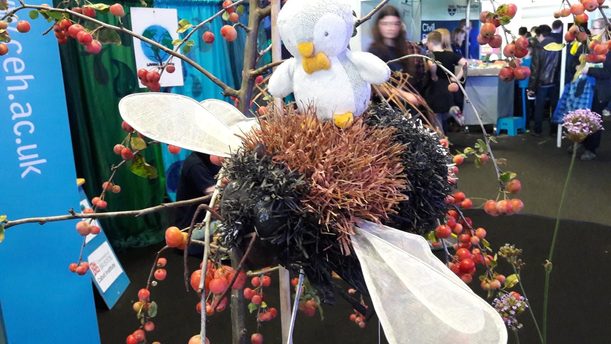 #itbpenguin had fun visiting the @CEHScienceNews stand at #NERCIntotheblue https://t.co/qkwHzRZ2Vy