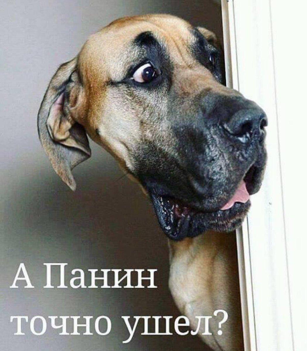 Вынесение приговора РФ Карпюку и Клыху - очередное судилище, - МИД - Цензор.НЕТ 9890