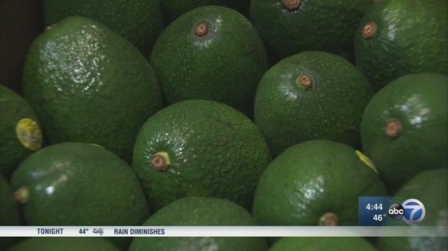 HOLY GUACAMOLE! Avocado shortage hits Chicago restaurants, markets...