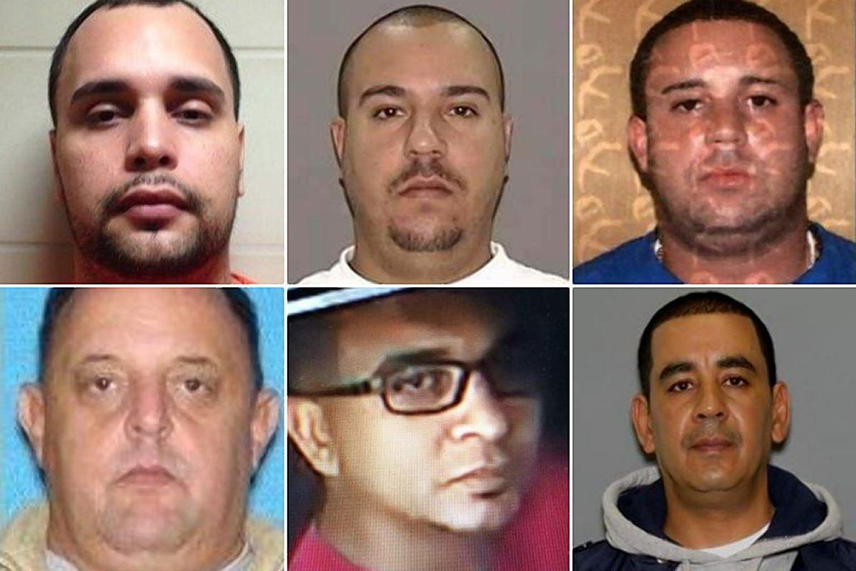 14 members of Bronx-based drug smuggling ring arrested