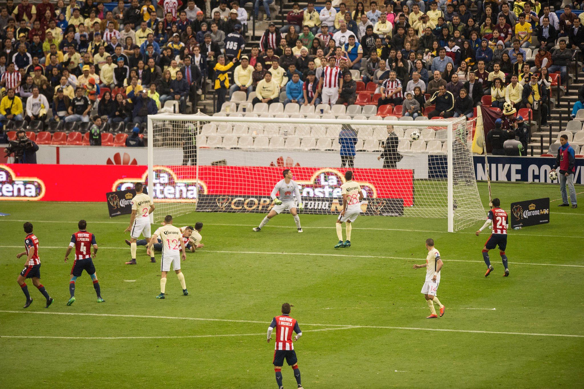 Alan Pulido festeja el gol.