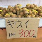 お店で見つけた発音不可能な謎の果物が楽しそうでじわじわくる!
