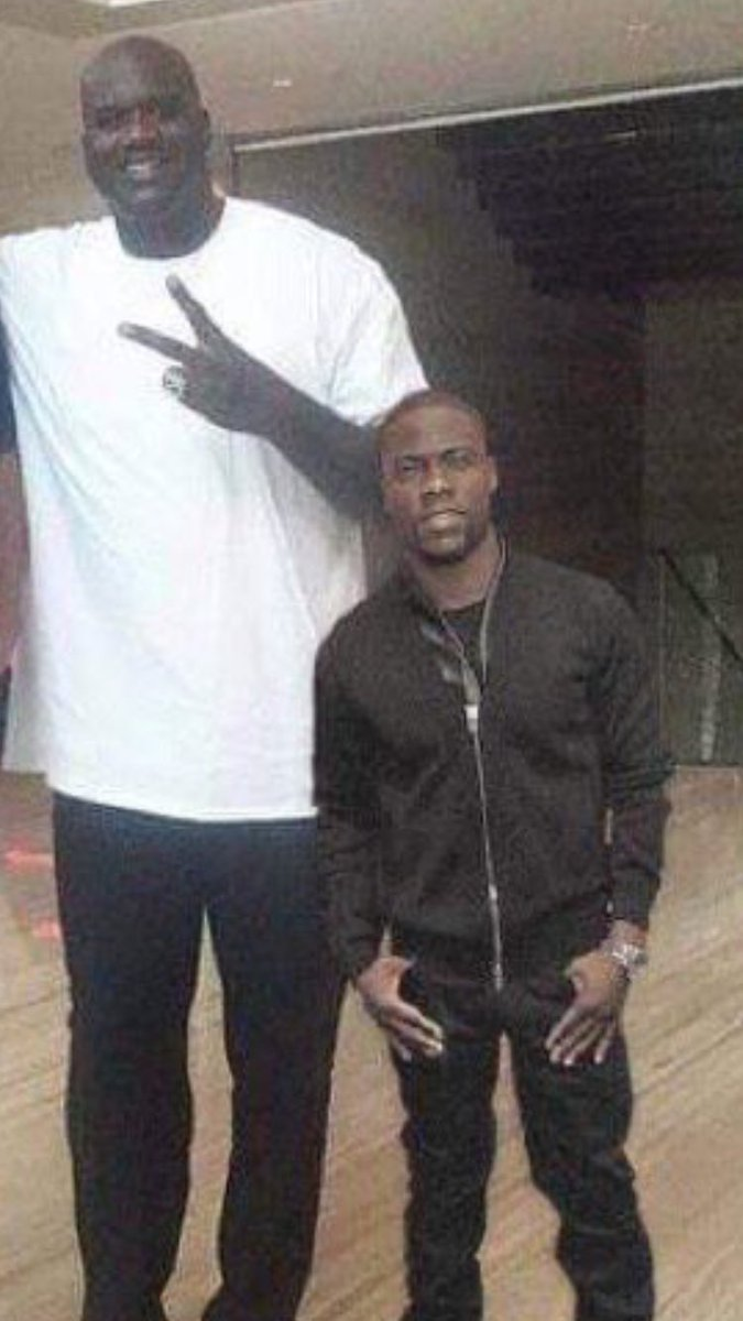 """doodles on Twitter: """"Halla: """"hey look it's Shaq and Kevin ..."""