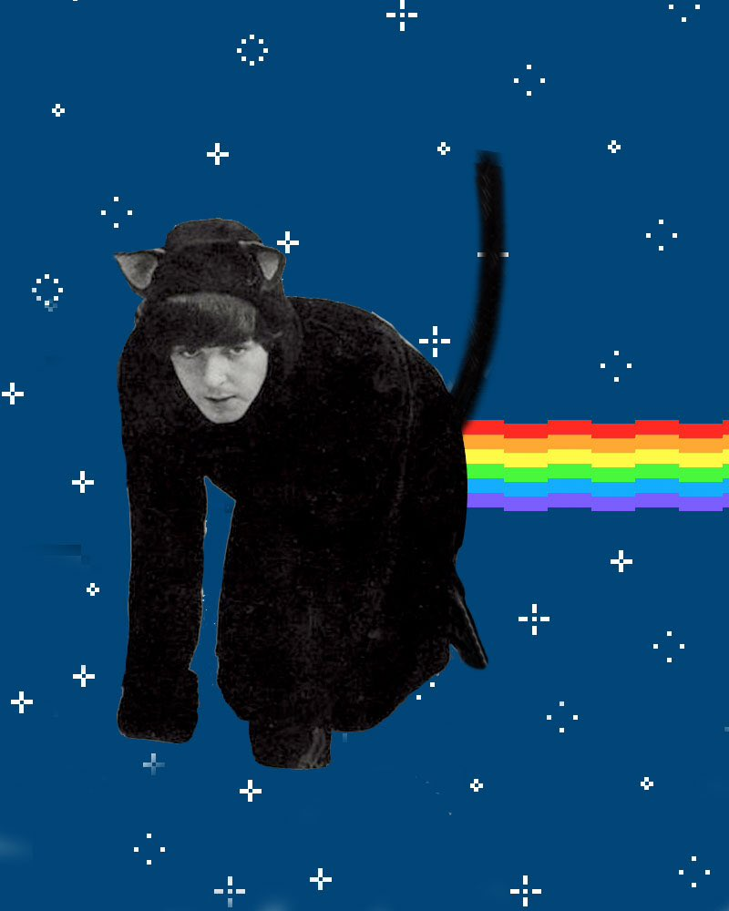 Beatles With Cats Beatleswithcats