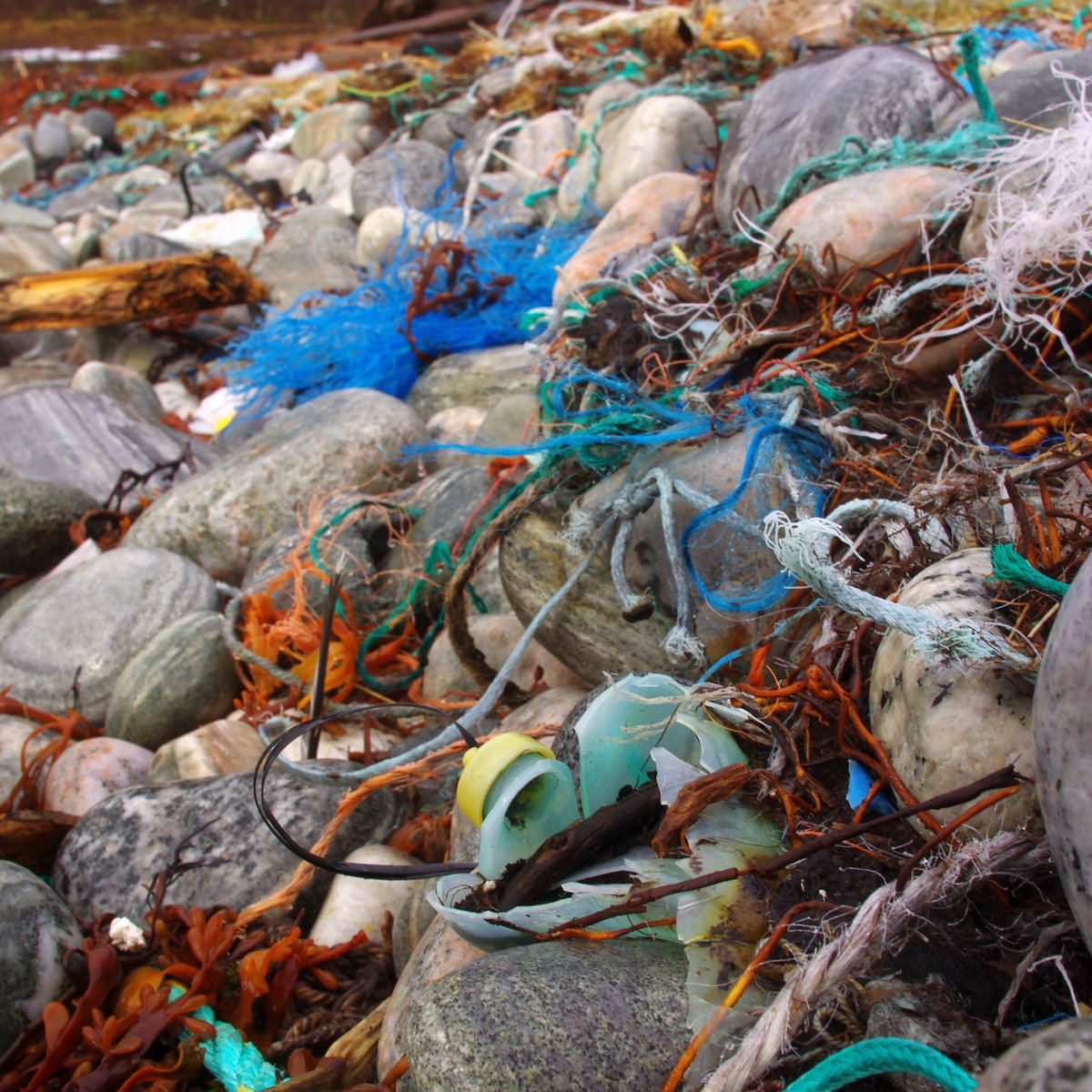 We're still accepting responses for our marine debris survey! Help us out by answering: https://t.co/271yD3Jf8h https://t.co/7ORs5ef9dn