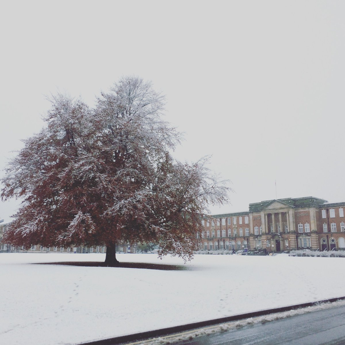 The view on our Headingley Campus this morning! https://t.co/NIqXuehGcB
