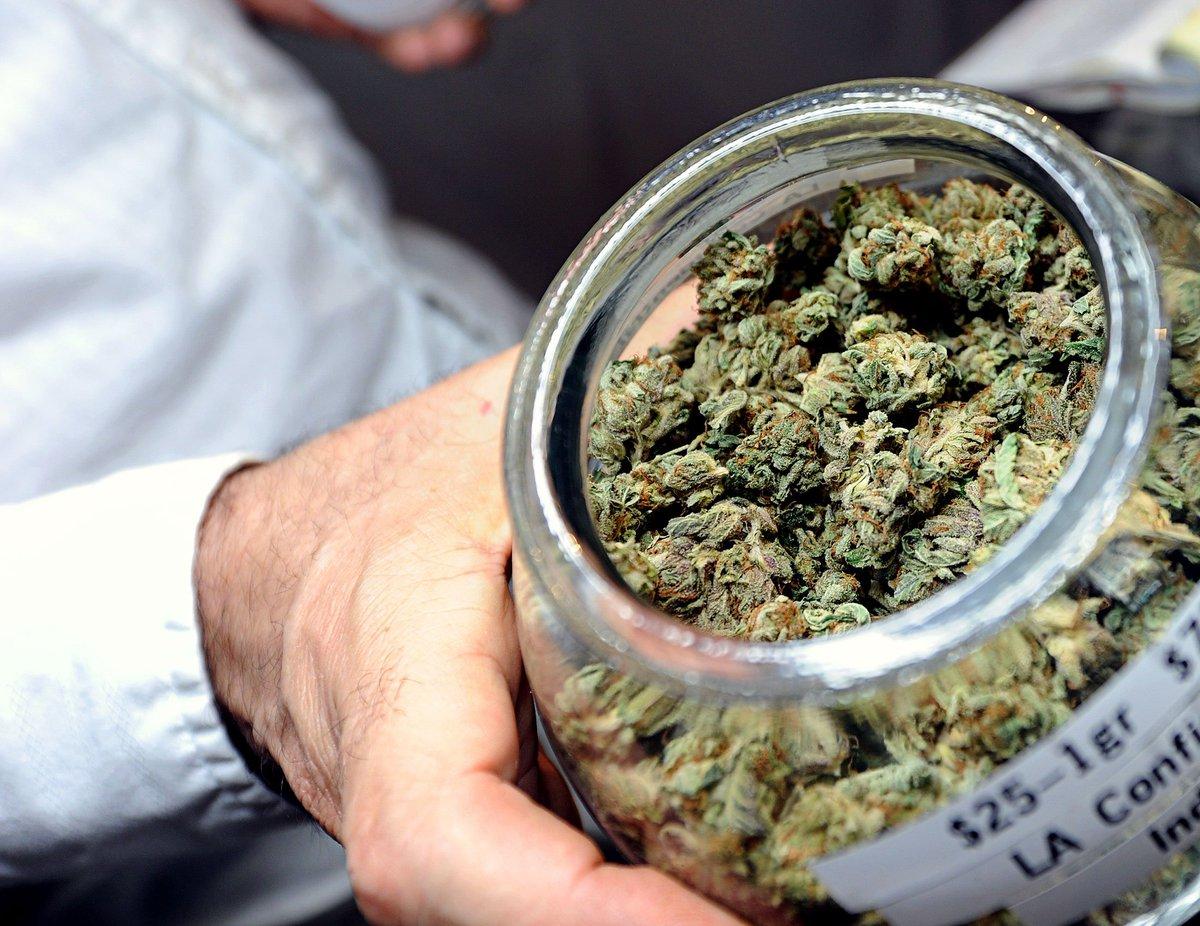 Марихуана как принимать минеральные удобрения для марихуаны