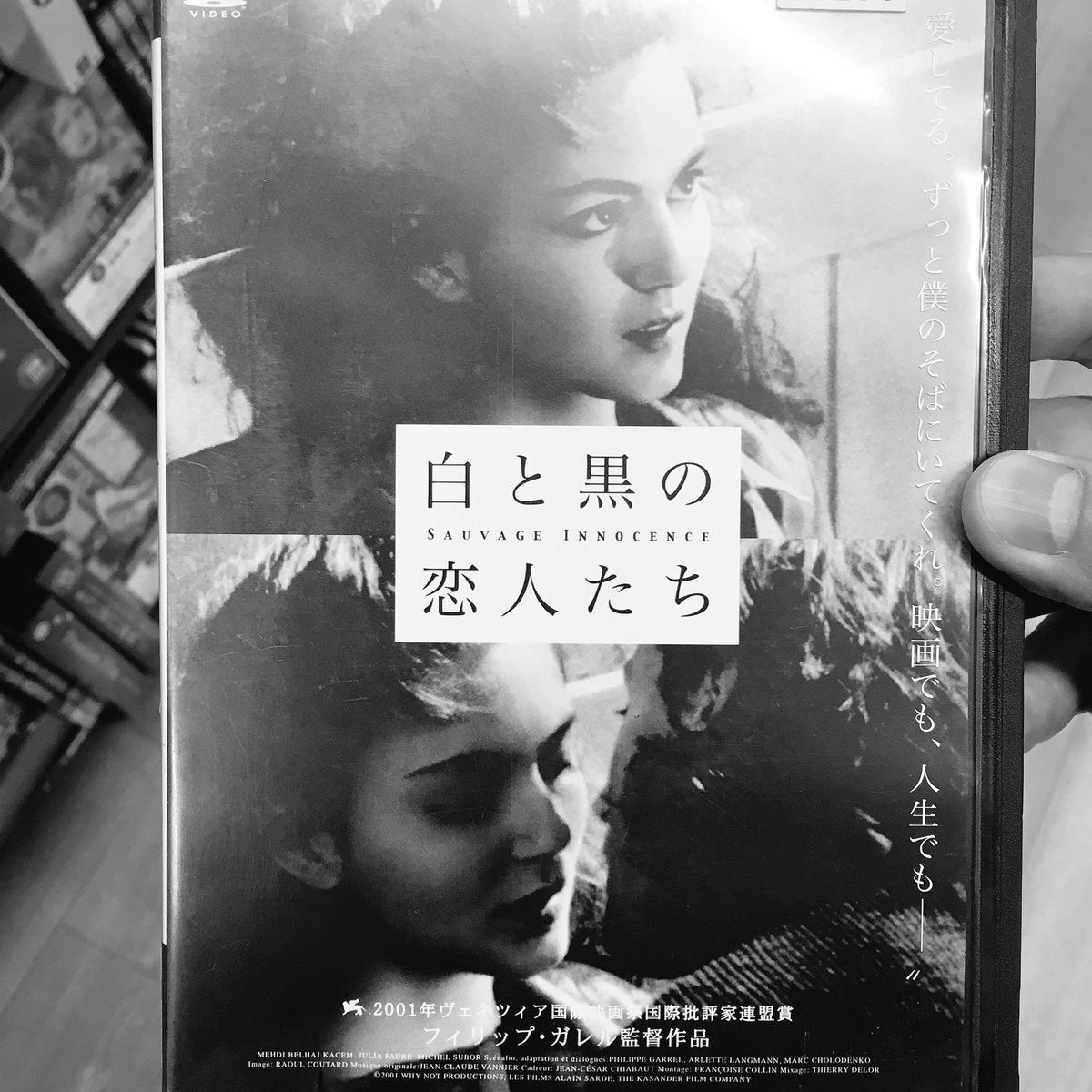 "Little✪Hollywood on Twitter: ""白と黒の恋人たち Sauvage Innocence ..."