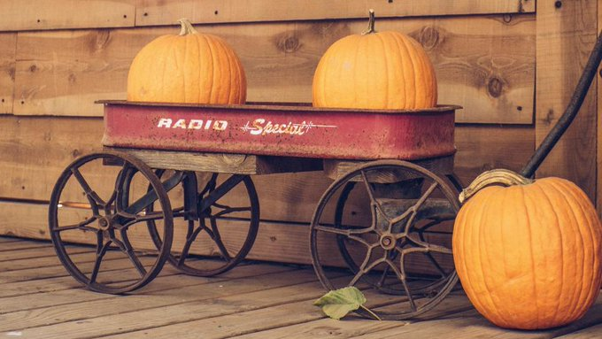 Some great DIY fall ideas to decorate your front porch area!