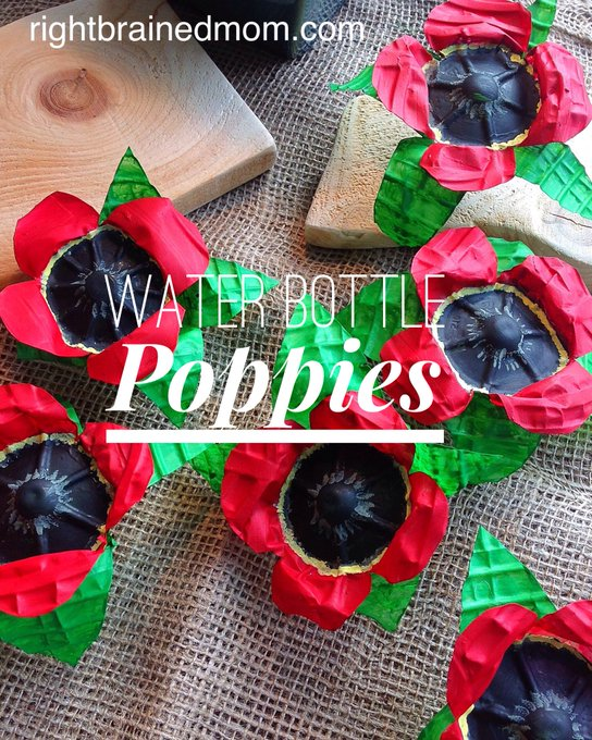 remembranceday craft diy earlyed preschool Kinderchat