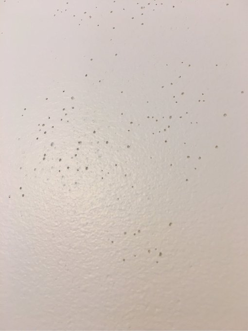 Drywall skim coat has bubbles. How to fix? DIY