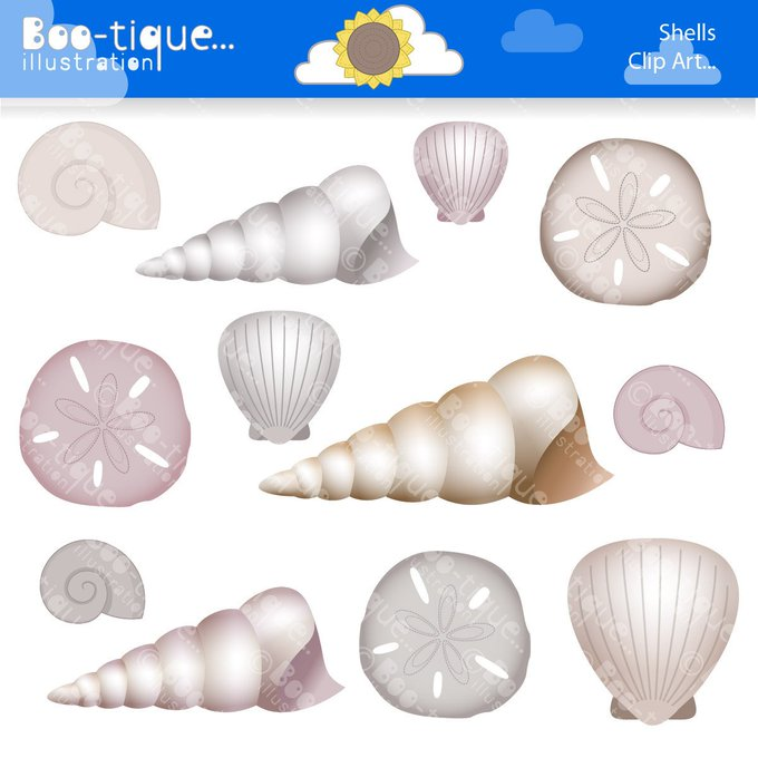 Shells Digital Clipart. Beach Shells Clip Art. Shells Clipart. Beach Clip Art Etsy crafts