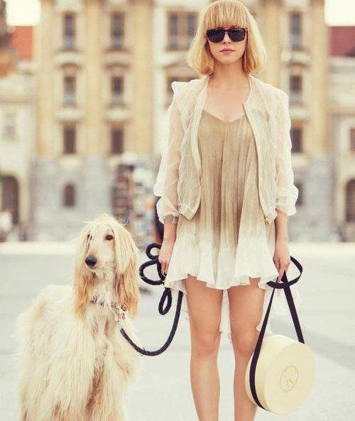 お散歩の時ワンちゃんと服を合わせている人って、お洒落でいいですね。