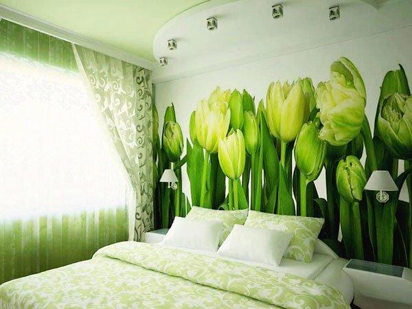 фотообои тюльпаны зеленые на кухне узбекистане