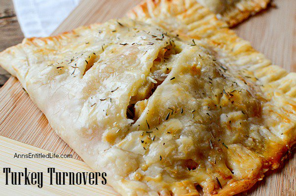 Easy Turkey Turnover