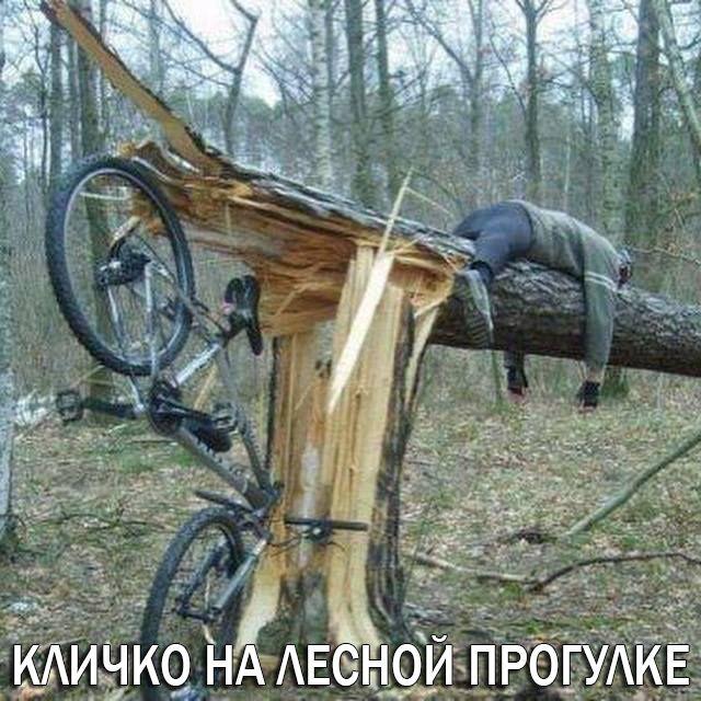 Кличко задекларировал  антиквариат, велосипеды, мотоцикл и почти 200 тысяч долларов наличкой - Цензор.НЕТ 3199