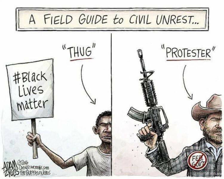 """Justin Caouette on Twitter: """"A Field Guide to Civil Unrest ..."""