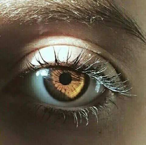 لون عيونك عسلى 4 ألوان تليق 9