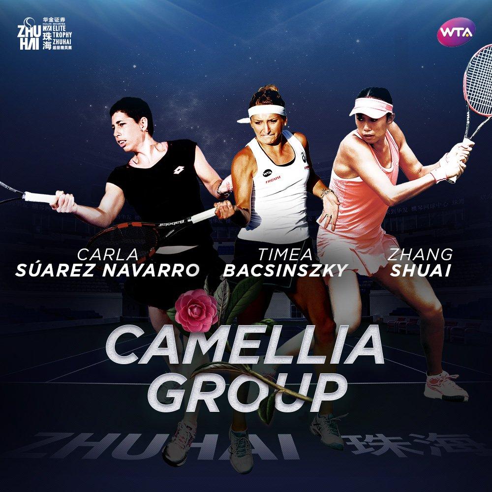 Kaméliová skupina; © WTA