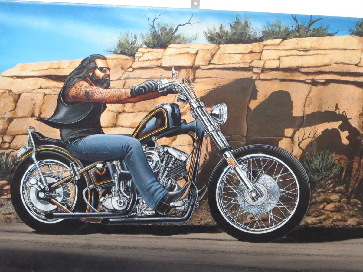 harley davidson inc motorcycle division case study by paul peter A brand community is a specialized the study of communal consumption in which members are not physically proximal to involving harley davidson motorcycle.