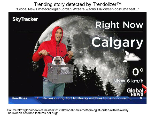 global news meteorologist jordanwitzels wacky halloween costume features pet pug - Meteorologist Halloween Costume