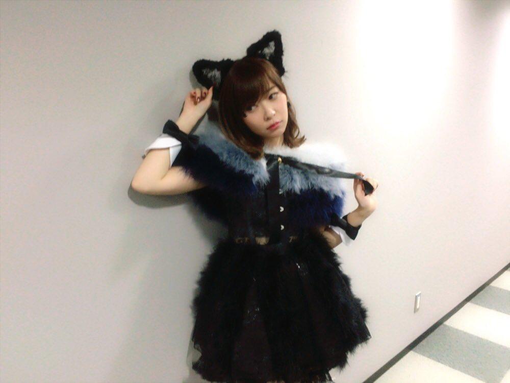 猫水着 黒 ブラック(衣装・コスチューム) アダルト …