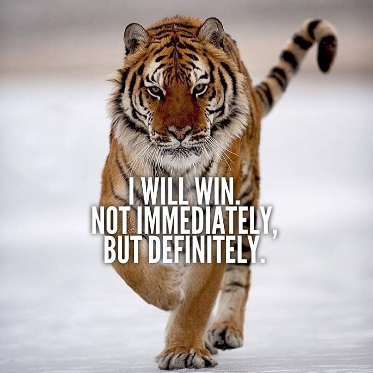 i will succeed not immediately but definitely - photo #22