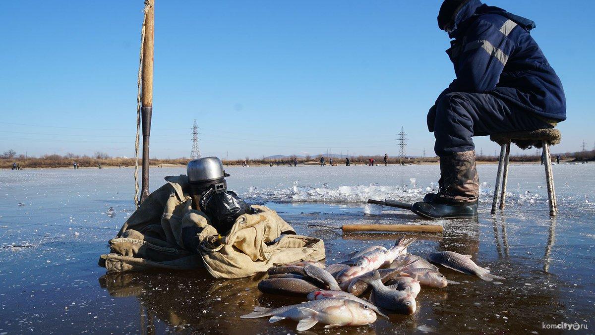 прогноз клева рыбы в николаевске-на-амуре