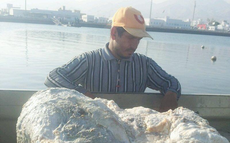 الحظ يجلب لـ 3 صيادين من عمان 3 ملايين دولار