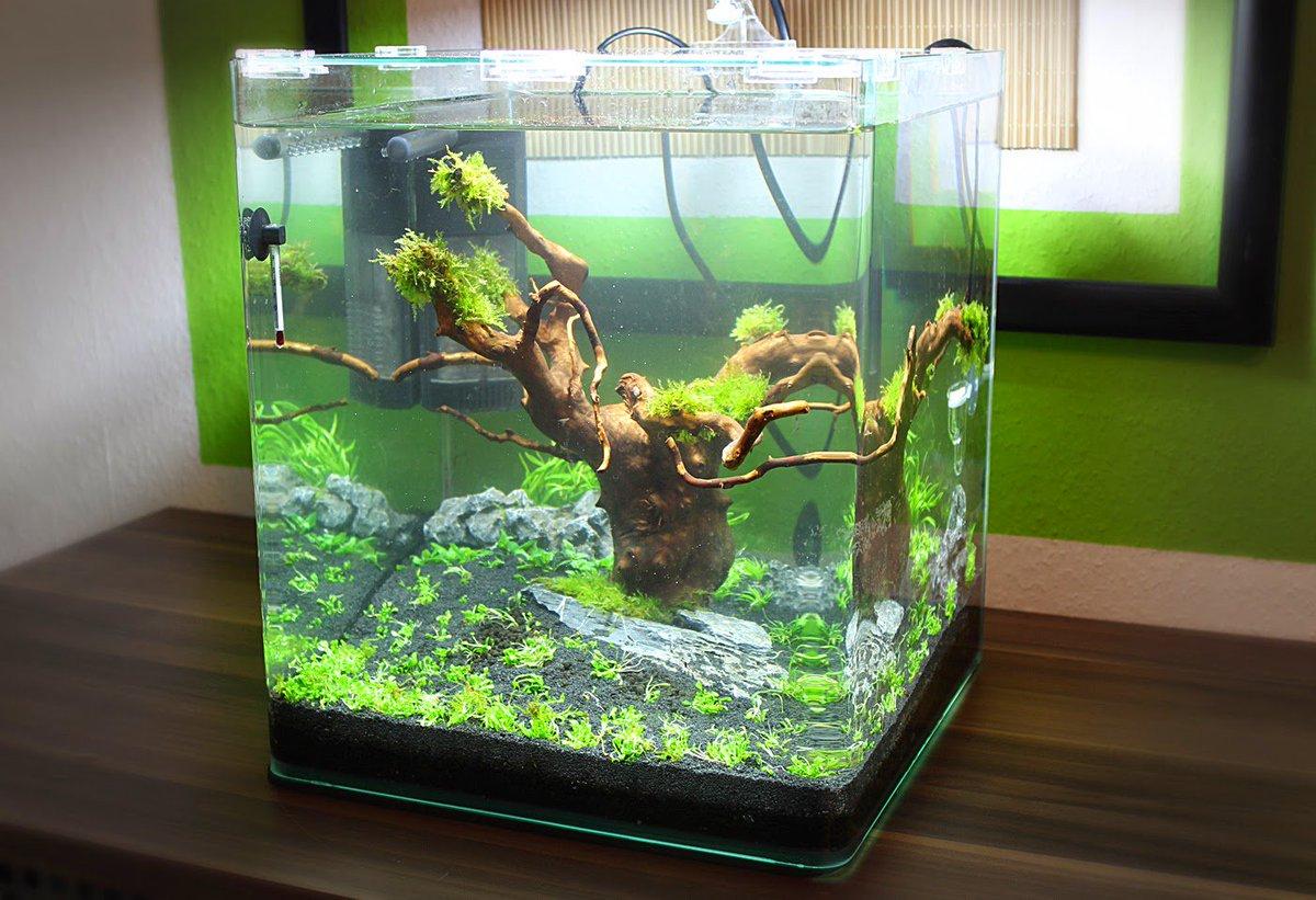 Akuarium cikampek on twitter di jual akuarium cantik sekitaran cikamp - Table basse aquarium prix ...
