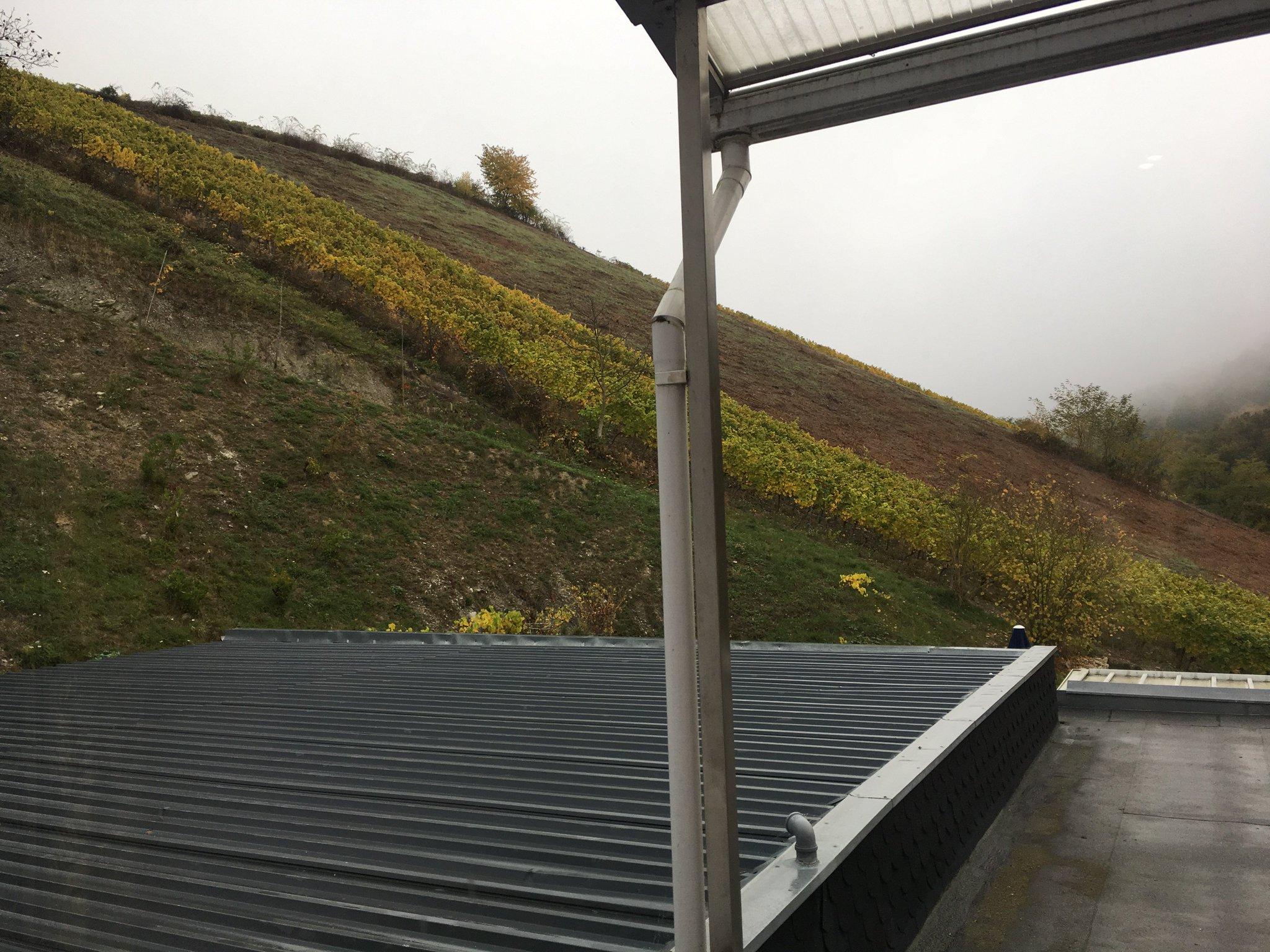 Guten Morgen. Auch heute wieder Frühnebel in Oberheimbach #meurers #weinbs https://t.co/2vmPbqcFGM