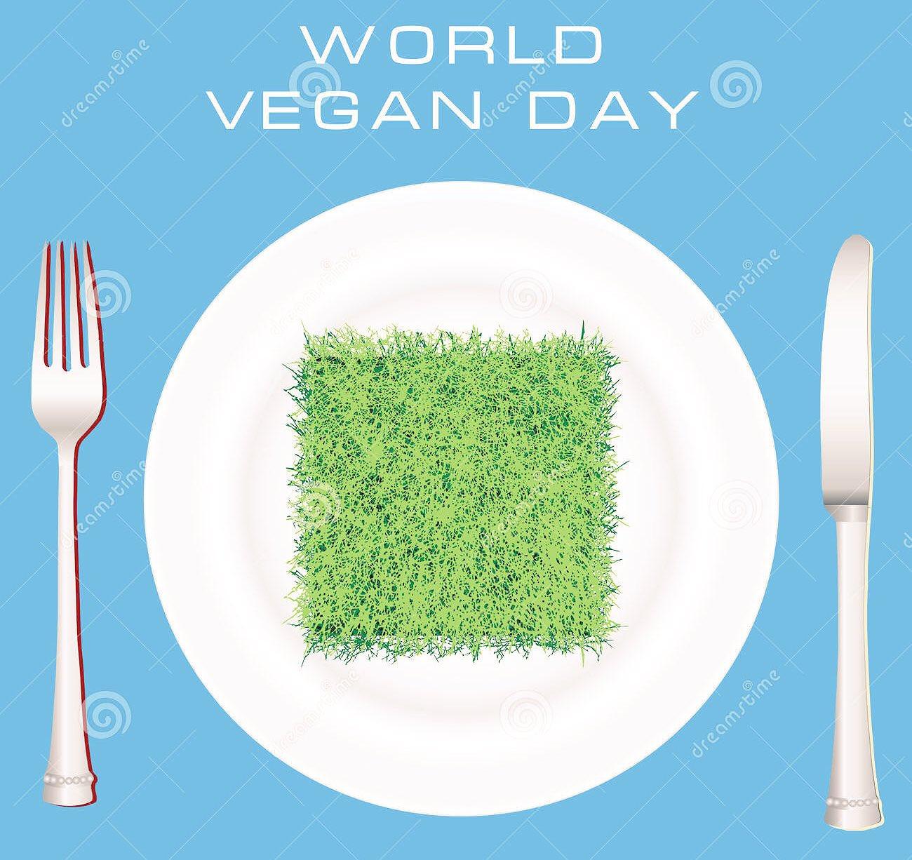 It's world vegan day, go vegan you won't regret it! #vegan #veggie #vegetarian https://t.co/sDvyCU54bL