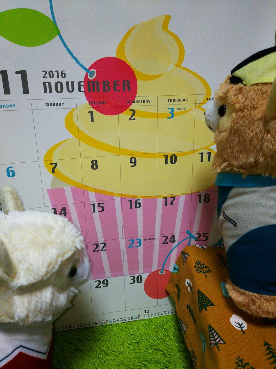 ちょっと遅くなりましたけど 「11月がログインしました」  (`・∞・)✧けーきだ?けーき♥ 今年もあと2ヶ月!!
