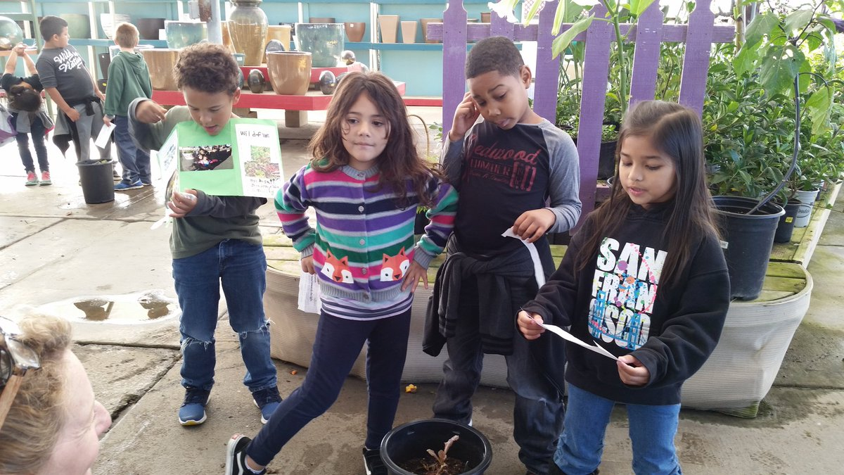 Barbara Totty On Twitter Napa Junction S First Graders Presenting Their Winter Vegetable At Mid City Nursery In American Canyon Https T Co Czdy0wfxa2