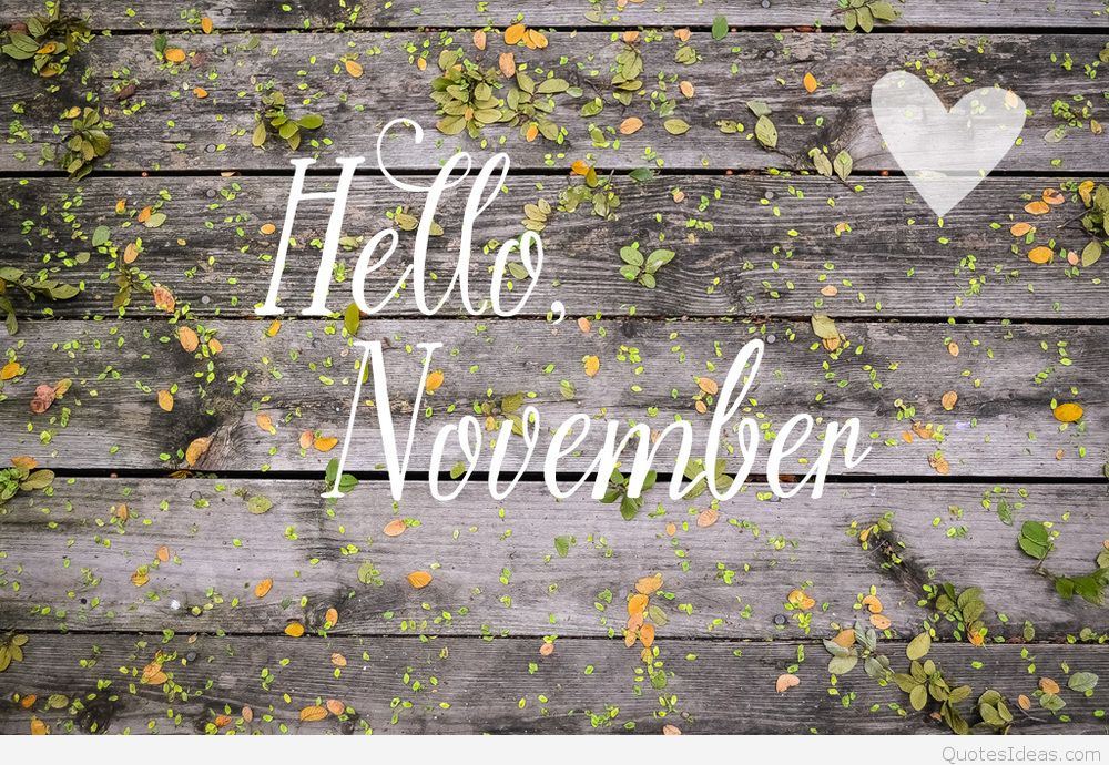 Neob Lavender On Twitter Happy November Everyone Winter