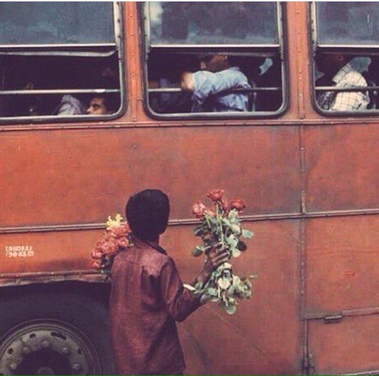 يابايع الورد لاتزعل اذا صدو قبلك انا اهديتهم قلبي وخلوني