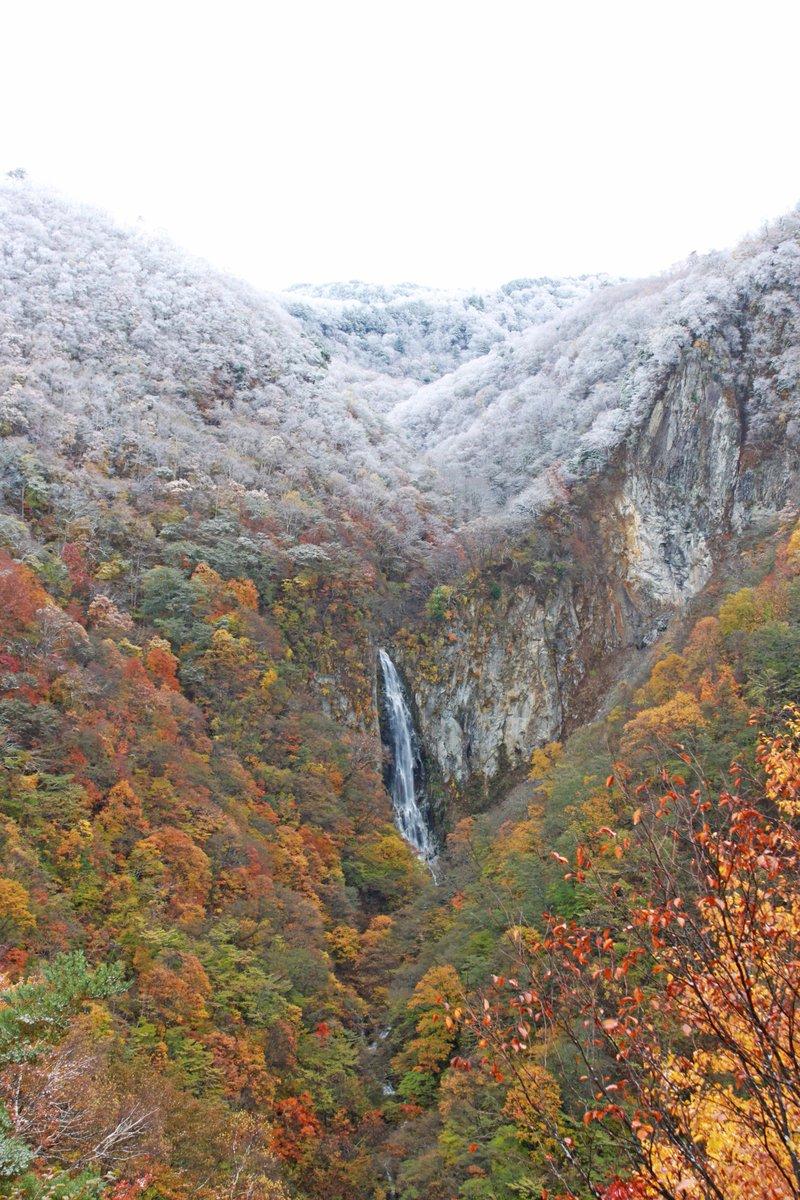 秋と冬の間 #志賀高原 #shigakogen #長野県 #nagano #japan #雪 #snow #澗満滝 #winter #autumn https://t.co/IUJEucSqcx