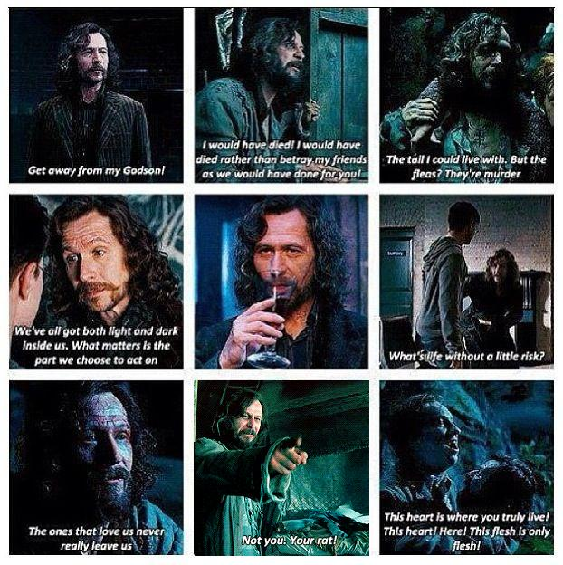 Harry Potter World On Twitter Sirius Black Movie Quotes
