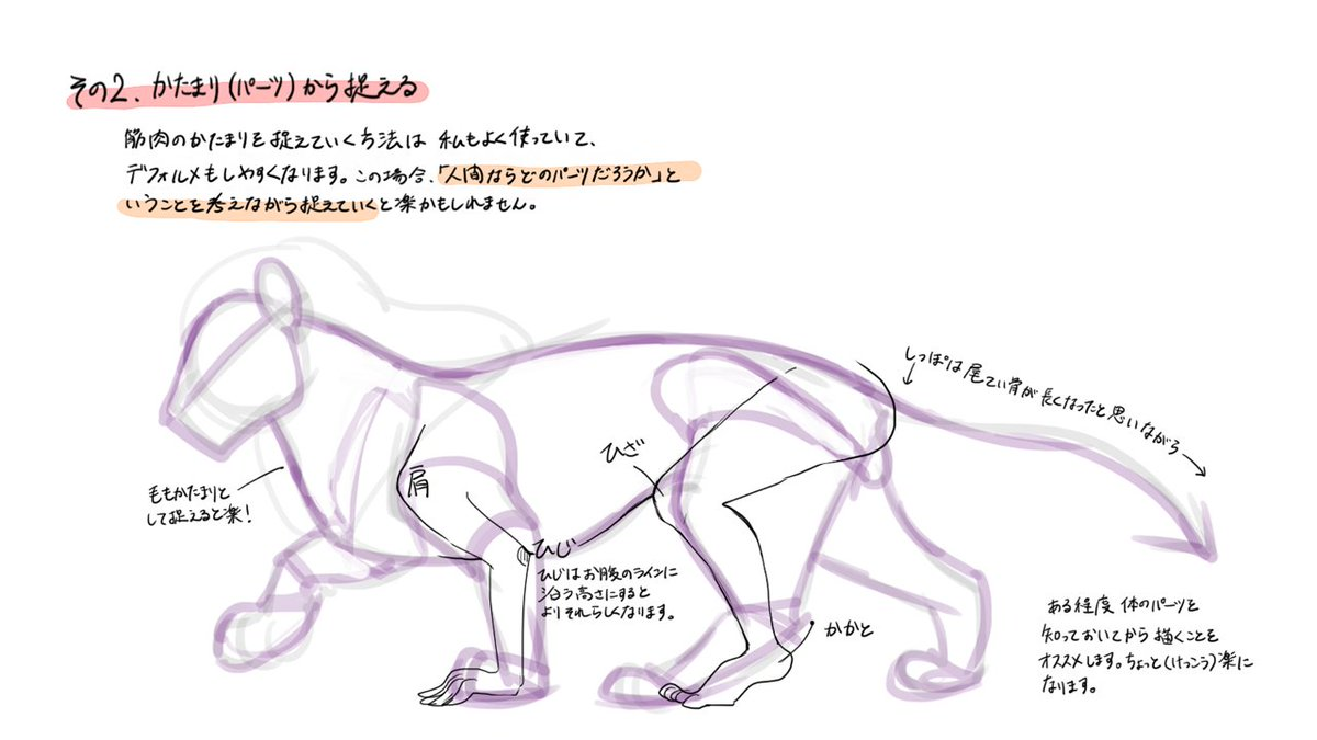 お絵かき講座パルミー Ar Twitter 似ている動物の描き方講座