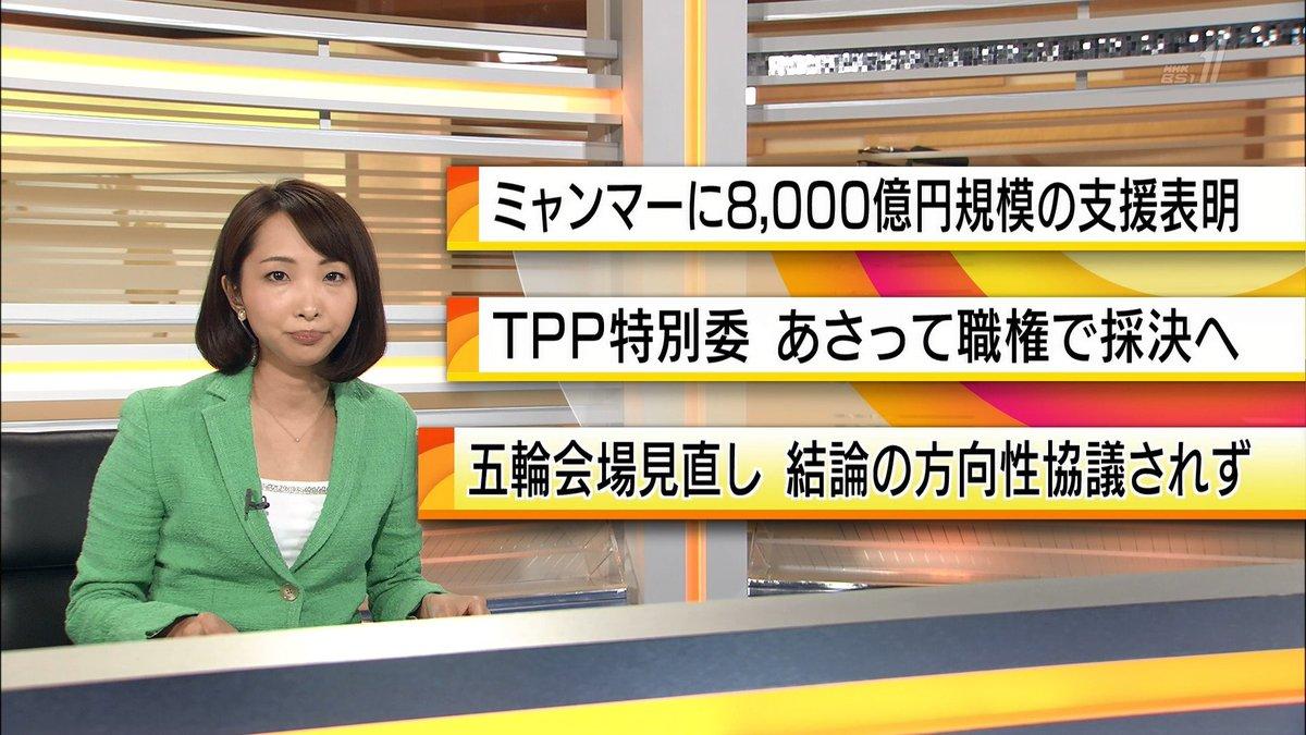 白石理央(NHK)の現在と年齢のwiki!カップ画像や美 …