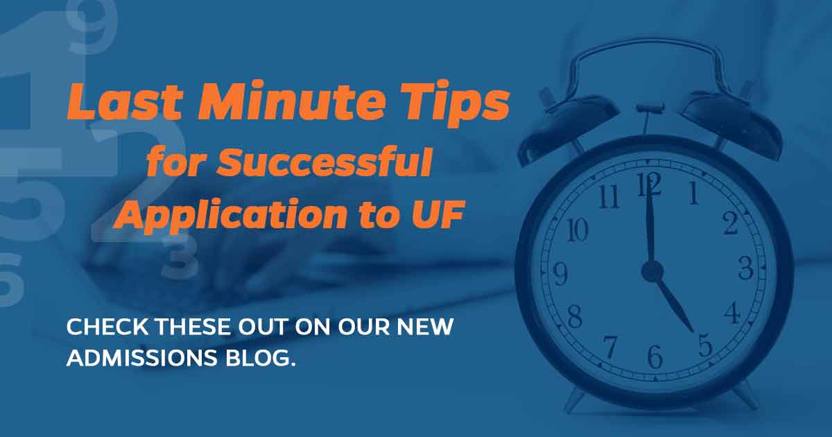 University of florida application essay