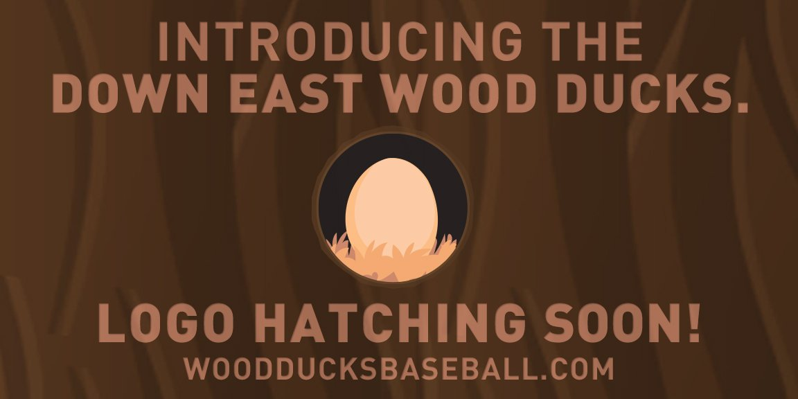 Down East Wood Ducks on Twitter: